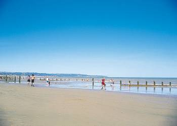 New Beach