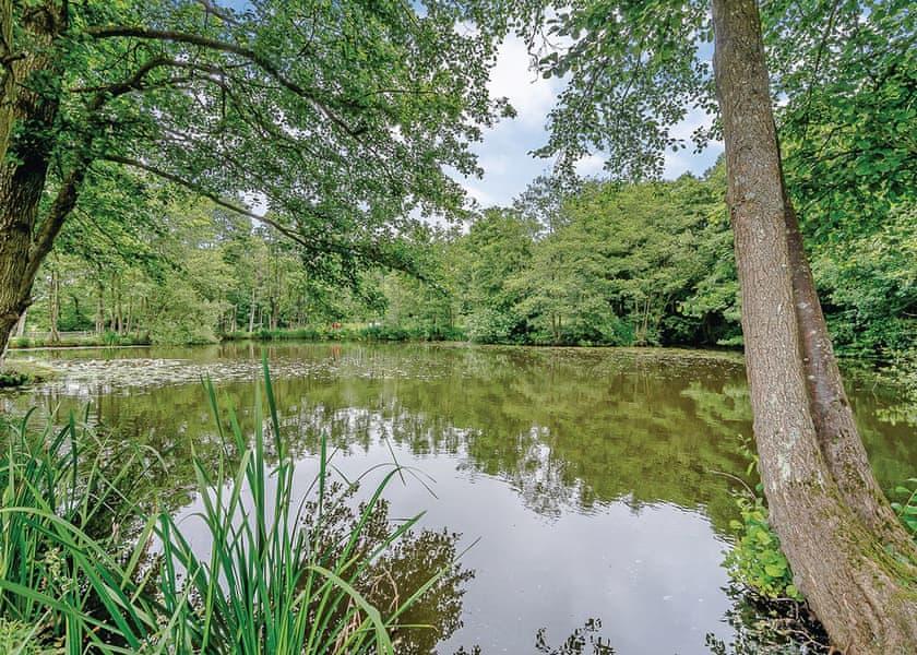 Warren Wood Country Park